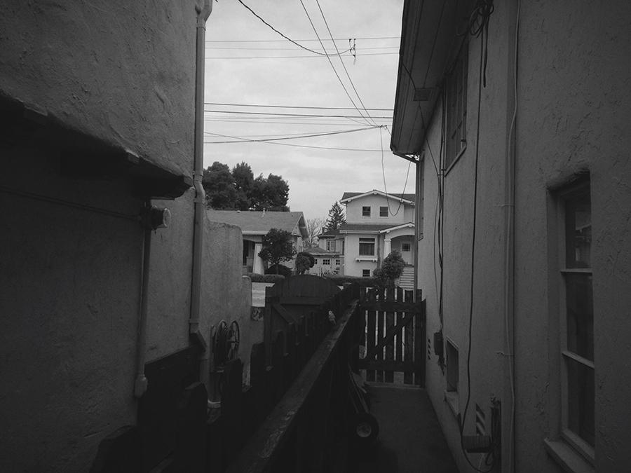 houses, backyard